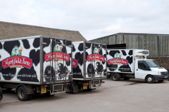marshfield, gluten, free, ice, cream, farm, tasting, parlour, cows, milk, process, flavours, trip, bath, u.k, somerset, farm, dog, cat, ice cream,