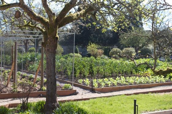 kitchen garden, bath , gluten free, the pig hotel