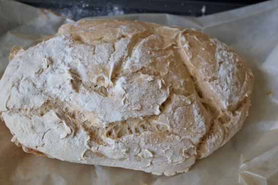 luce's, gluten free, sourdough, mix, gluten free blog uk