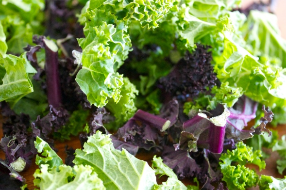 Black kale, Green Kale, kale salad, gluten free recipe, blog, uk,